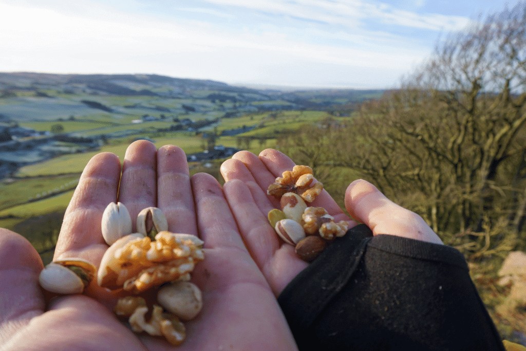 nut mixture in person's hands