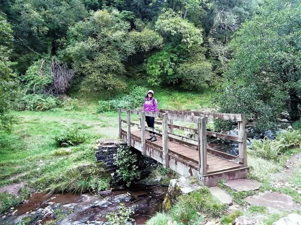 caerfanell wooden footbridge