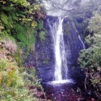 Talybont Waterfalls Walk