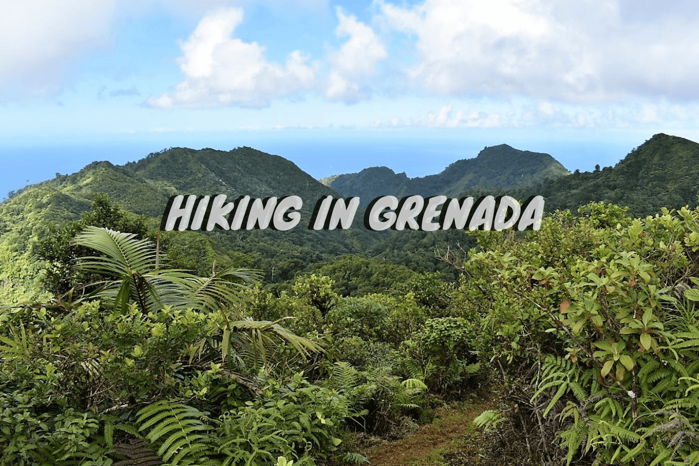 Hiking in Grenada: Everything You Need To Know