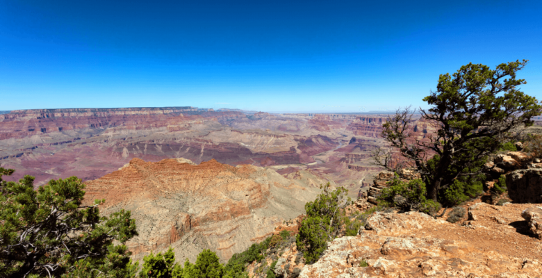 south rim trail grand canyon national park