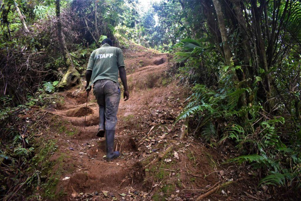 steep section of mount qua qua trail