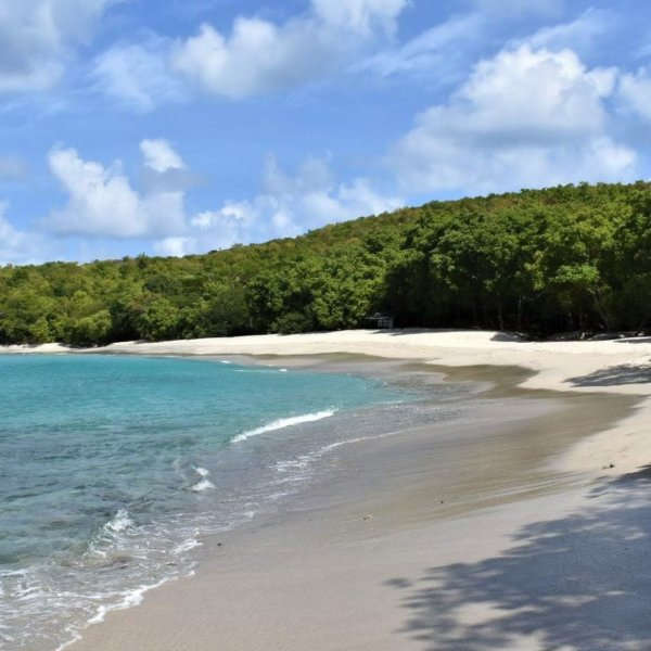 Anse La Roche Beach Carriacou