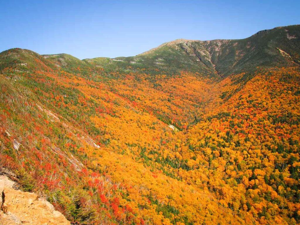 white mountain national forest fall colors