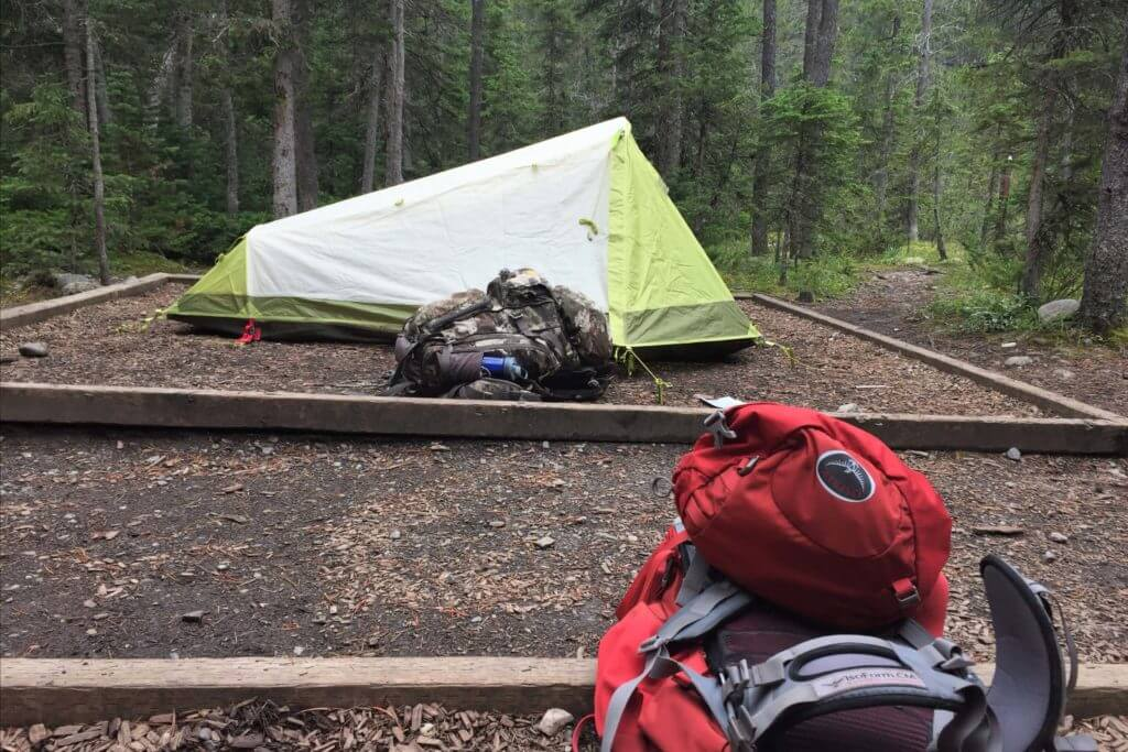 a tent pad on the berg lake trail