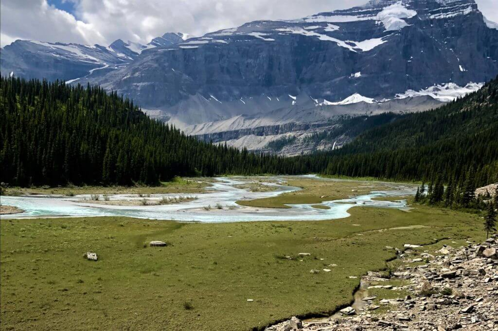 view from berg lake trail between emperor falls and marmot campground