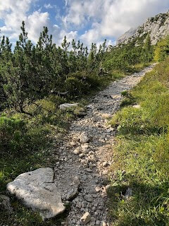 White Rock Filled Narrow Path on alta via #1 hiking trail