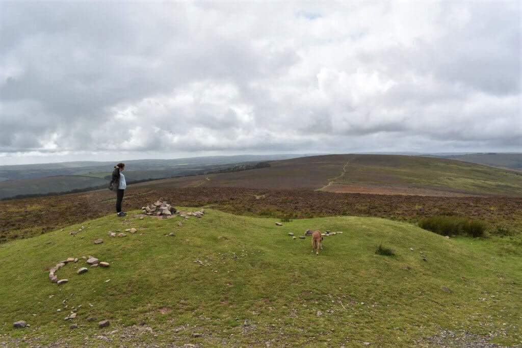 westerly view from dunkery beacon