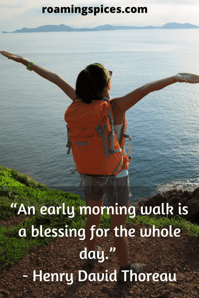 Henry David Thoreau quote about walking