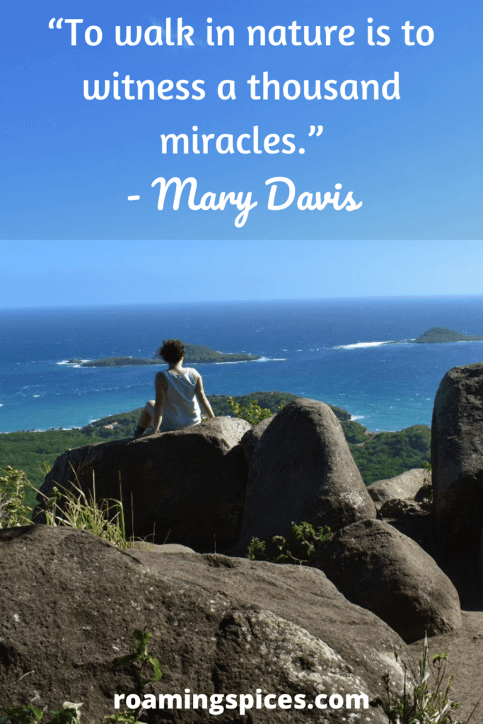 Mary Davis quotes about hiking