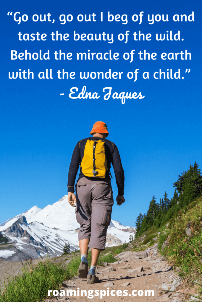 Go out, go out I beg of you and taste the beauty of the wild. Behold the miracle of the earth with all the wonder of a child.  Edna Jaques