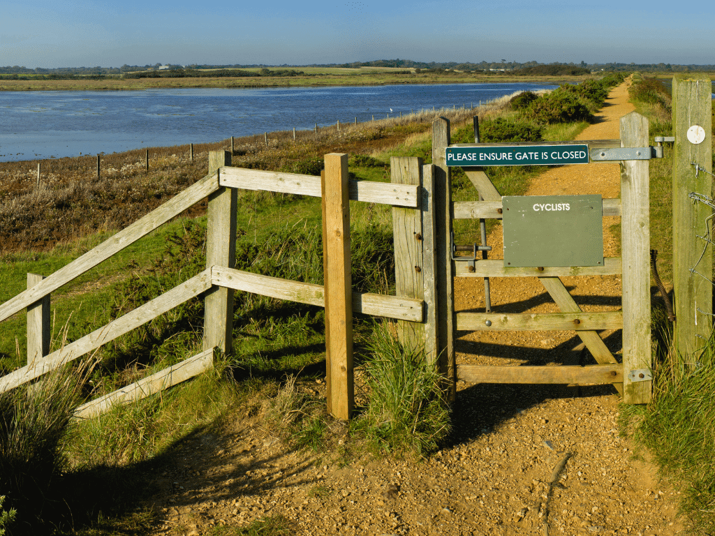 best walks in the new forest - keyhaven Marshes