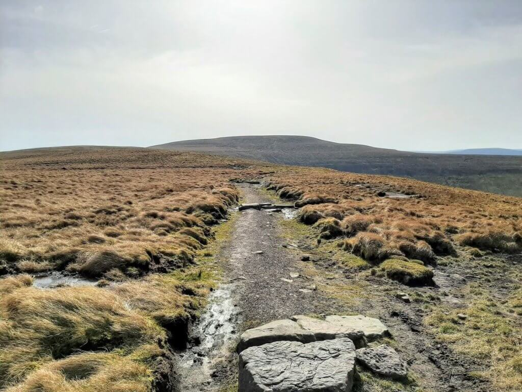 trail leading to the summit of waun fach