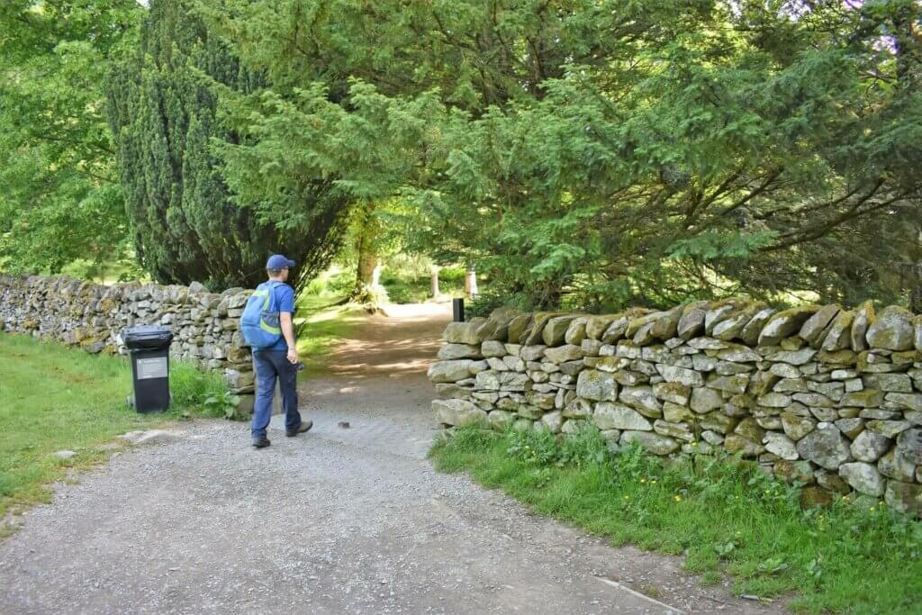 entrance to the glade at Aira Force