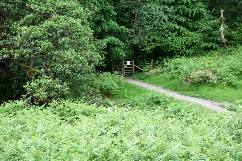 wooden gate into aira force