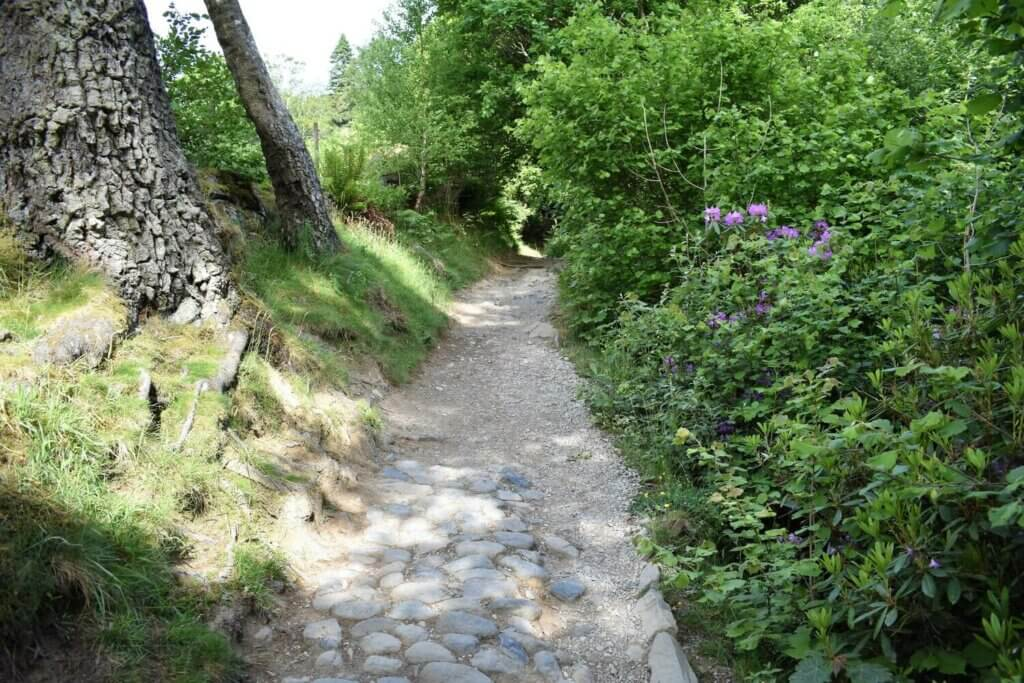 path leading to aira force waterfall