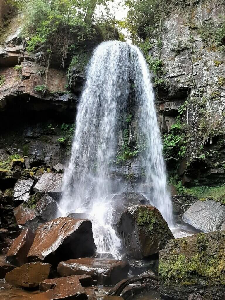 melincourt waterfall up close