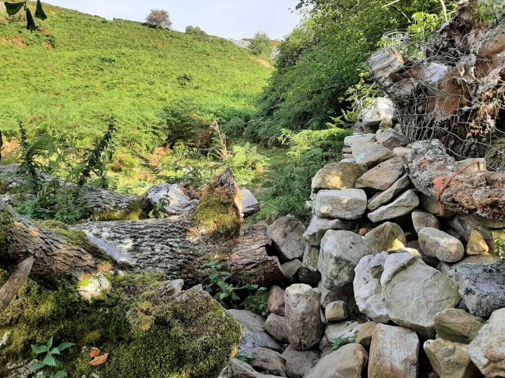 trail to table mountain crickhowell