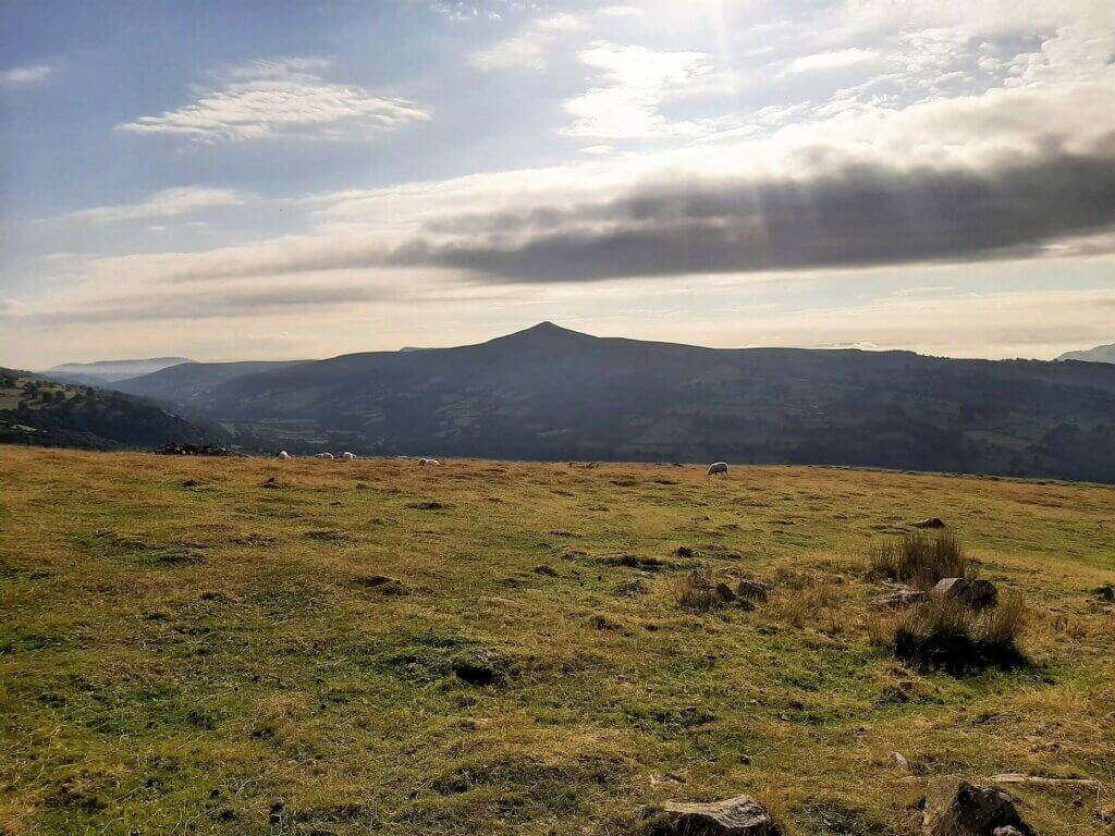 summit of table mountain with sugarloaf in the background