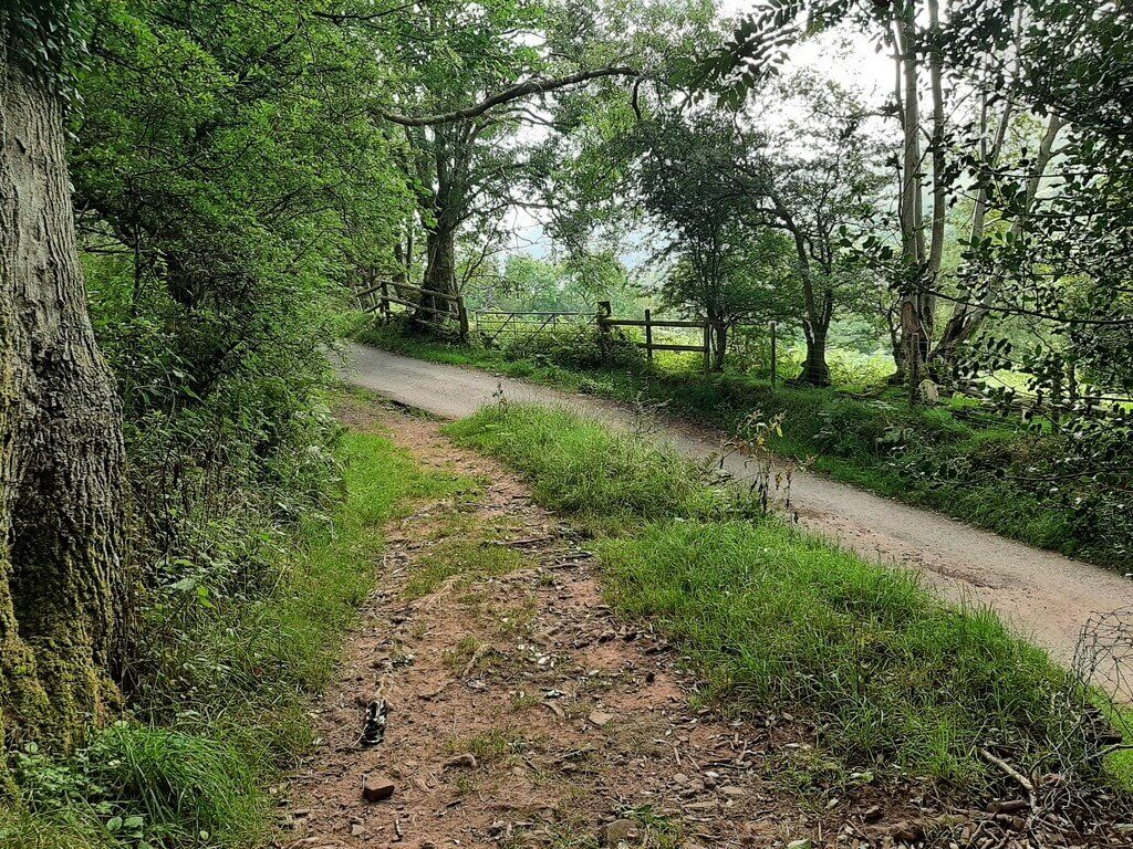 bridleway joins country road